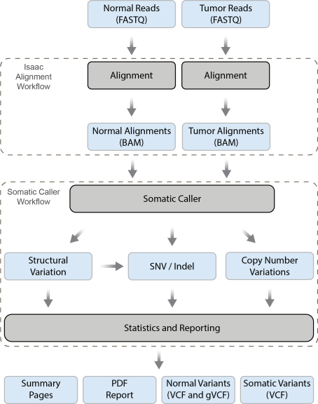Workflow diagram ccuart